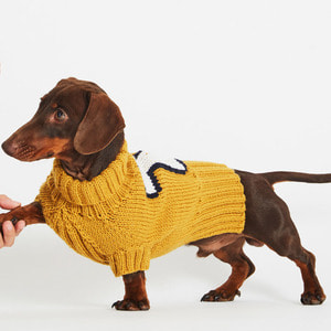 Dog Days Sweater Kit